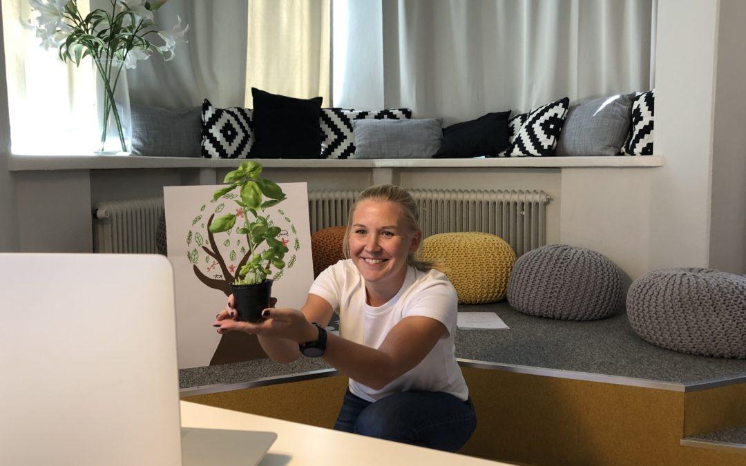 Jardines FinlandWay® trae a Colombia la educación temprana líder en el mundo con un nuevo programa virtual